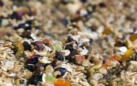 Cereales completos: desayuna como un rey