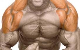 Entrenamiento de hombros: consejos prácticos