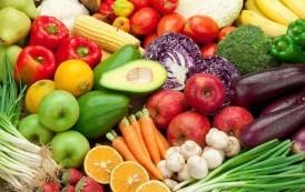 Primavera en el plato: vegetales de temporada