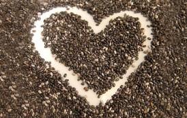Las semillas y sus beneficios: cuida tu interior